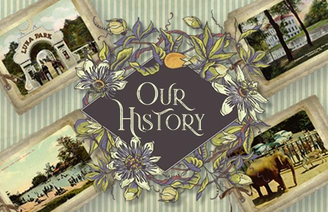 nay aug park history